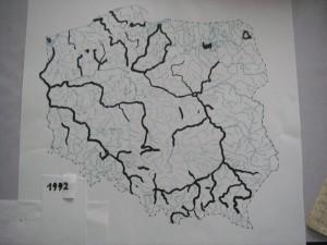 IMGP9161