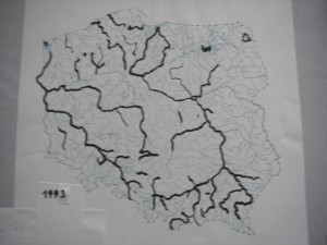 IMGP9162
